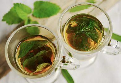 Zioła, które zbiera się w lipcu. Jakie warto zasuszyć na leczniczą herbatę?