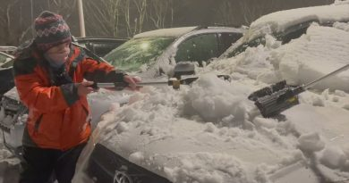 10-latek wraz z przyjacielem odśnieżyli 80 samochodów pracowników szpitala