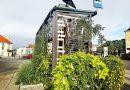 """Tak wyglądają """"zielone przystanki"""" w jednym z polskich miast"""